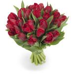 tulpenboeket-rood-parkiet